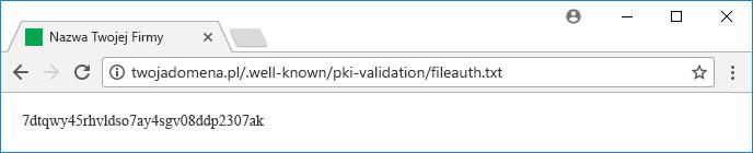 Weryfikacja poprzez plik na serwerze